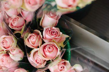 מה חשוב לבחון לגבי חנות פרחים בירושלים?